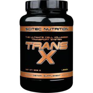 Trans-X Scitec